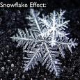 Иван Димов, бивш ученик на гимназията,  за ефекта на снежинката, за балона, който ни пречи да променяме света, за болката и силата да си различен. Гледайте неговата реч пред [...]